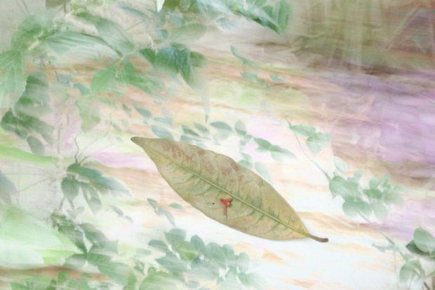 和田裕子さん
