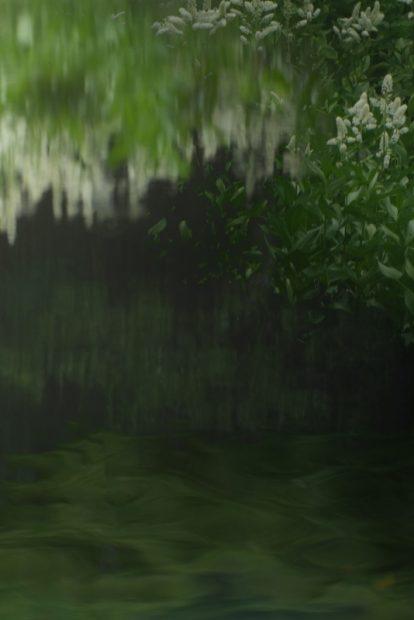 樋口千賀子の作品
