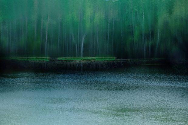 池田和子の作品