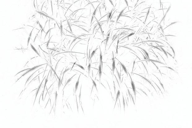 中野雅代の作品